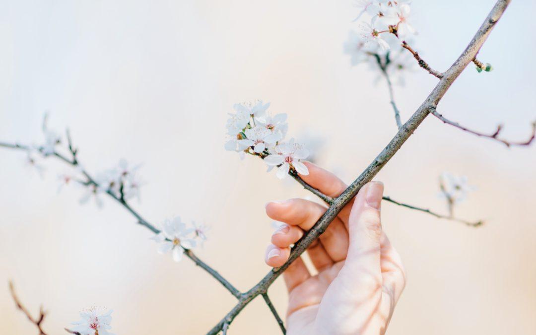 Uważność (ang. Mindfulness) – jak praktykować